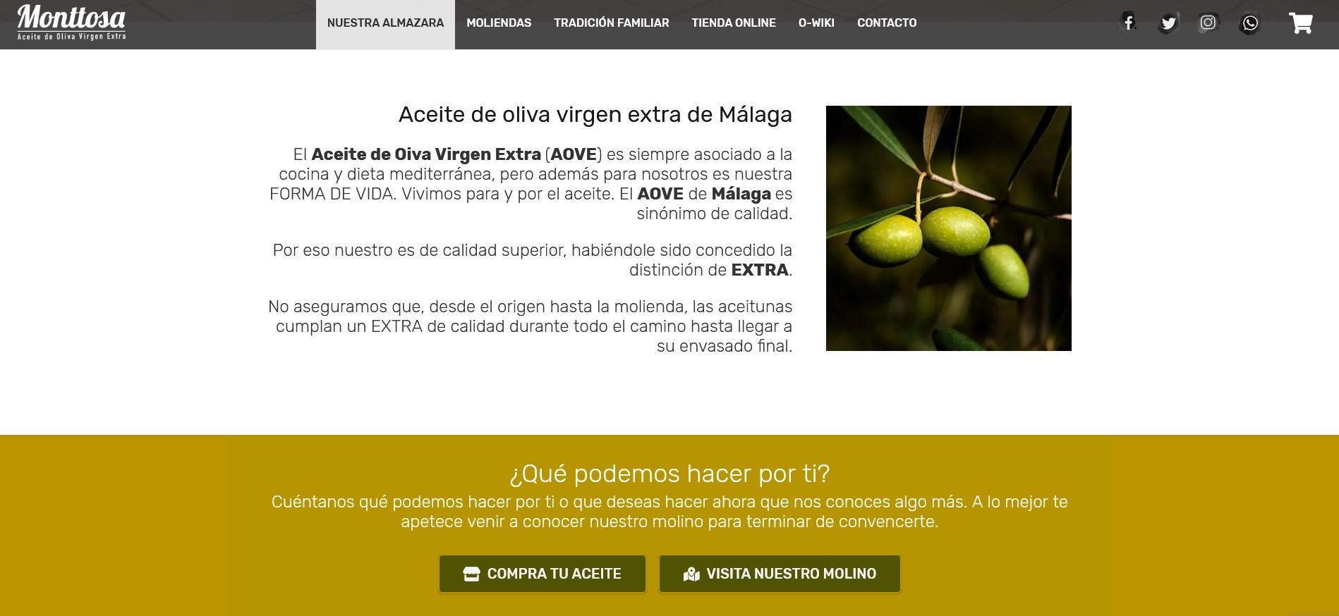 Aceites Monttosa web